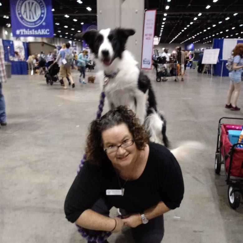 Brevard County Dog Trainer judges trick dogs at the 2019 National Dog Show hosted by Royal Canin